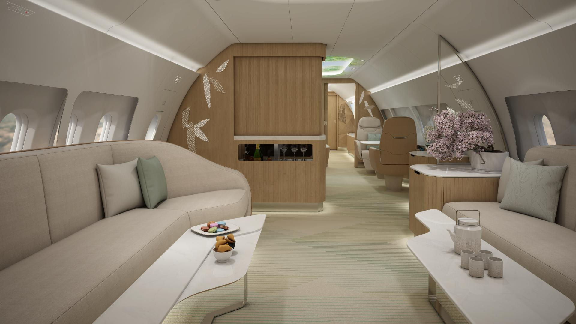 A320 VIP cabin - looks like nature